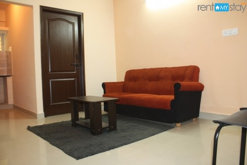 Furnished 2 BHK enroute Electronic City in Bommanahalli/image1