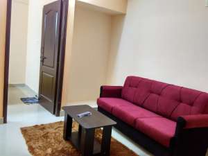 Furnished 1BHK near AMR IT Park